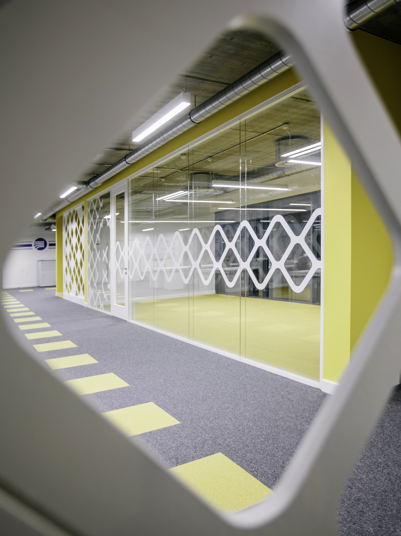 Office Fitout-Vistamed-View through Screen