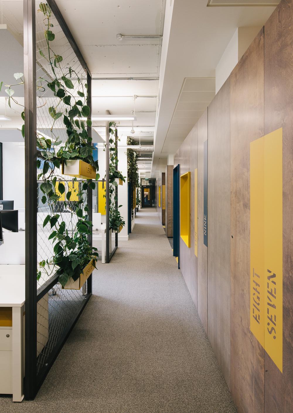 Office fitout -Liferay-main corridor